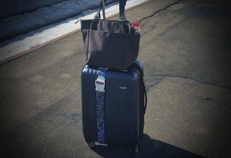 luggage vignette