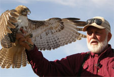Julian Hawk Watch and birds of prey show each winter near San Diego