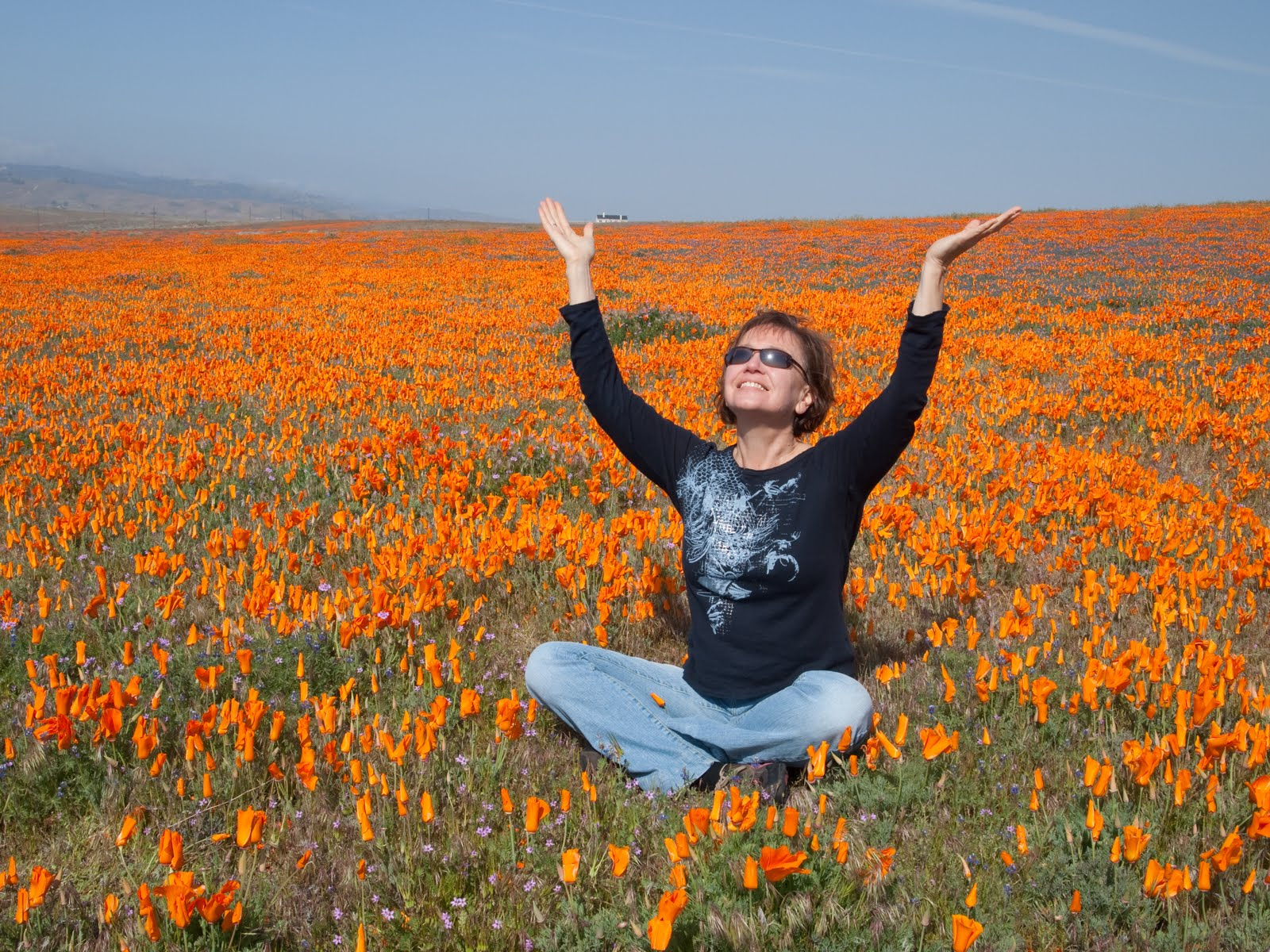 Enjoying wildflower display in Antelope Valley
