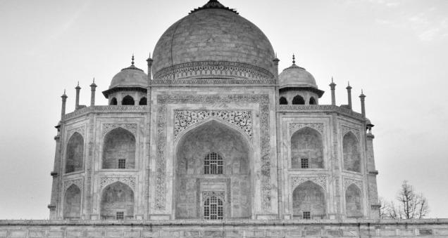 India Taj, India Sushi, tripwellness
