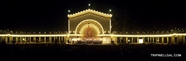 Balboa Park Tree Holiday Stress and tips here on Tripwellgal