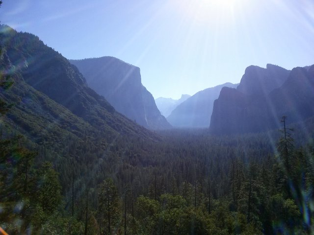 morning in Yosemite valley