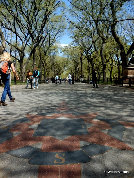 Central Park, trip wellness, walking tours in new york