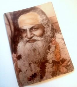 Guru Dev, trip wellness