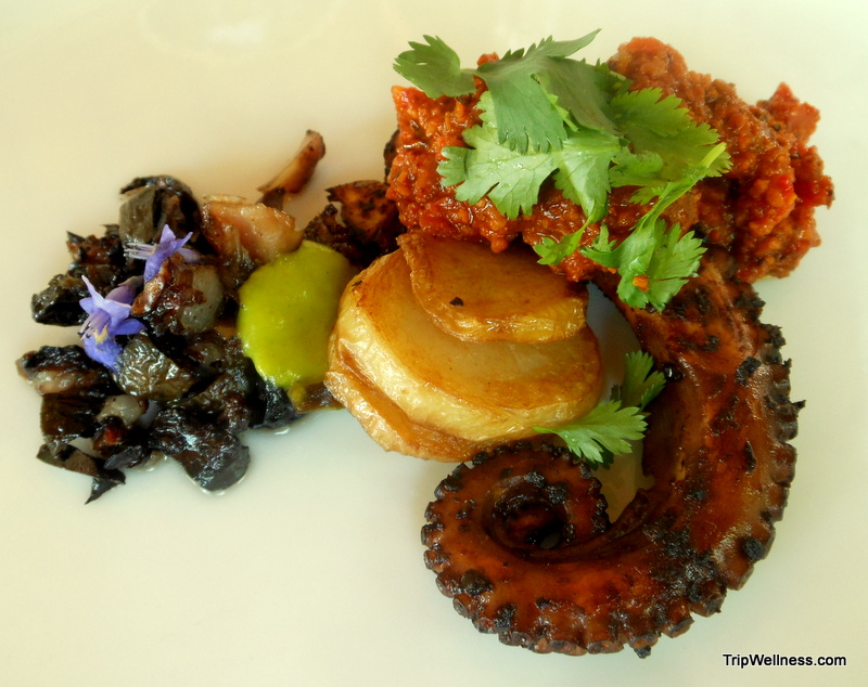Octopus, Zama, trip wellness