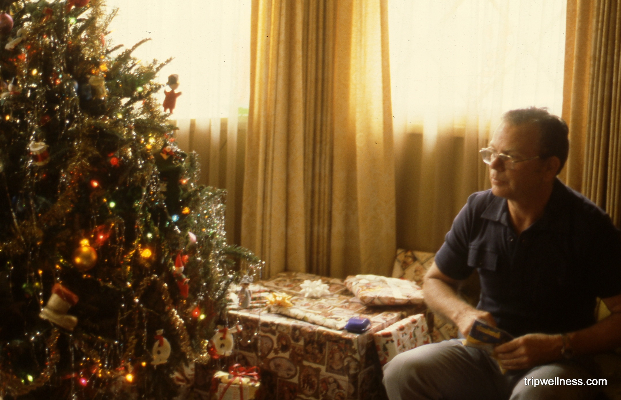 Dad, christmas tree,holiday timeline, trip wellness