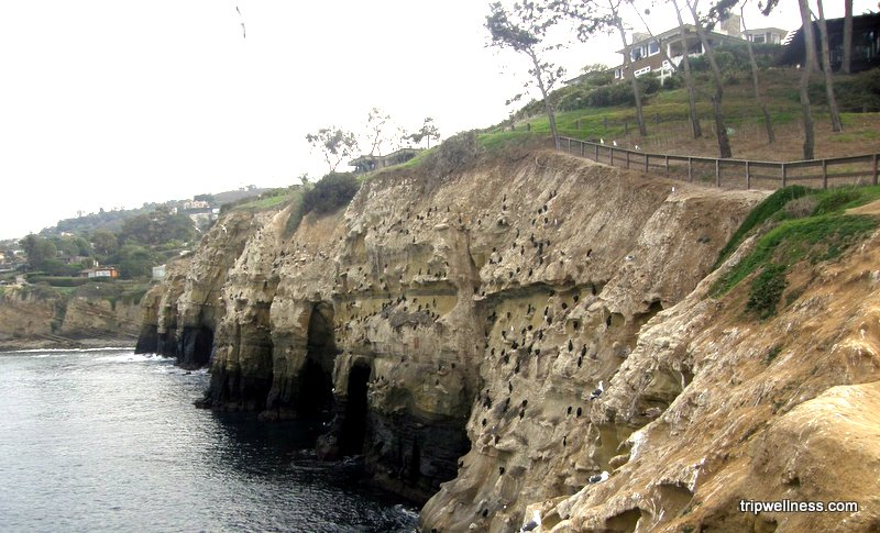 La Jolla hills trail, trip wellness, what to see in San Diego