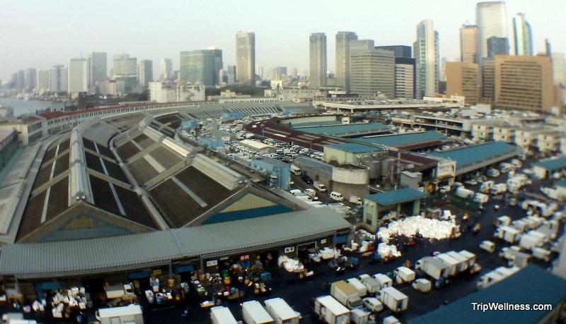 What to do in Tokyo, Tsujiki fish market, Trip wellness, Tsujiki fish market