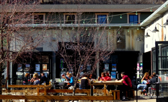 Coffee Bar, What to do in Truckee, Trip Wellness