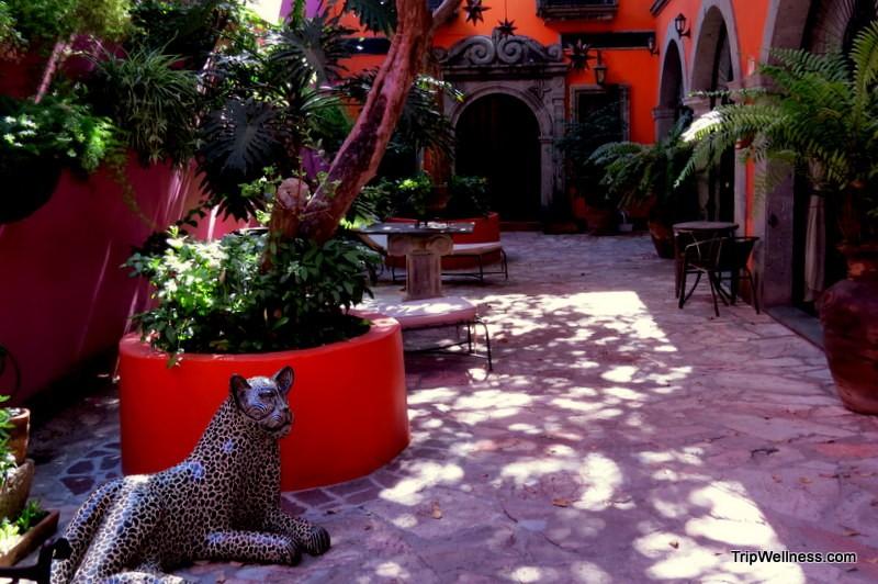 Casa Campos Courtyard