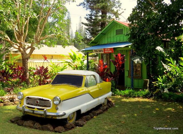 Lanai village shop