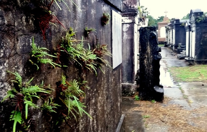 Visiting The Oldest New Orleans Cemetery Lafayette No 1