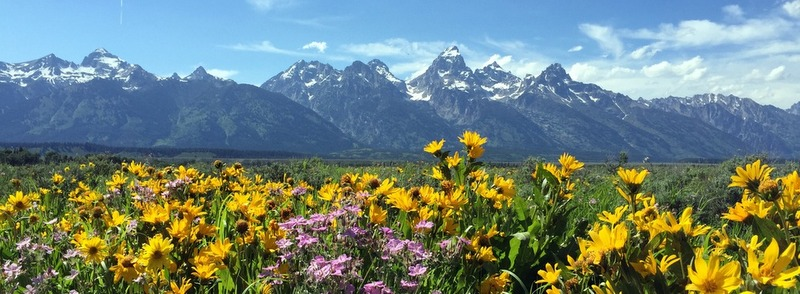 Grand Tetons best pictures by Dave Rudie