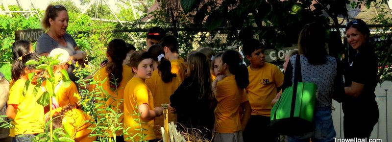 Kids learn about farming and the best travel