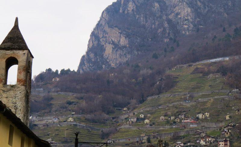 Hillside above Chiavenna
