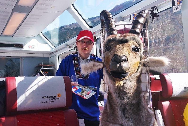 Reindeer visitor on the Glacier Express
