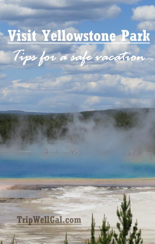 Visit Yellowstone Park Pin 2