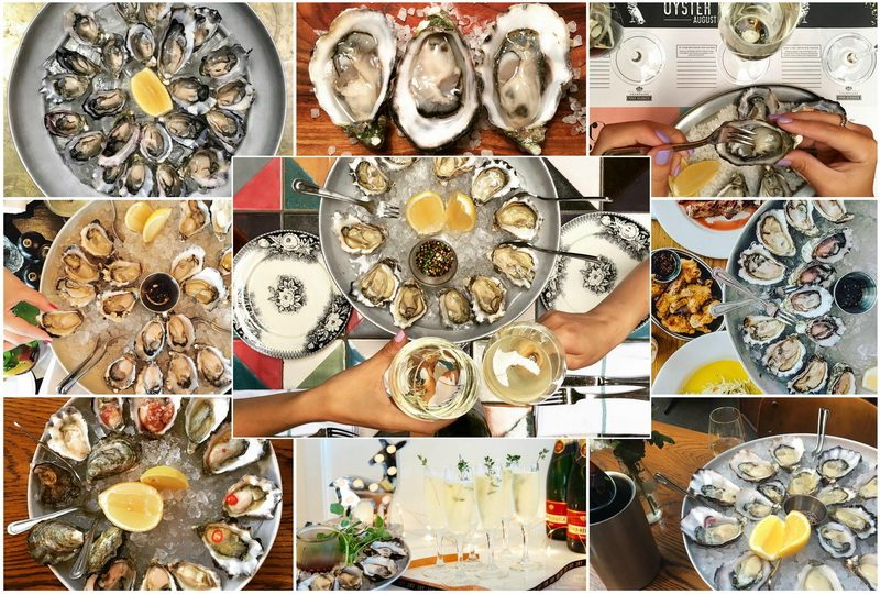 The Morrison Bar serves delicious seafood in Sydney