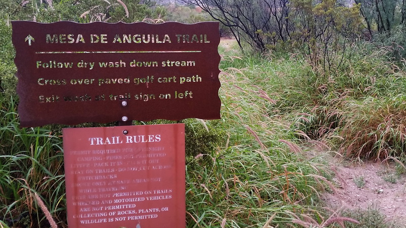 lajitas trail sign