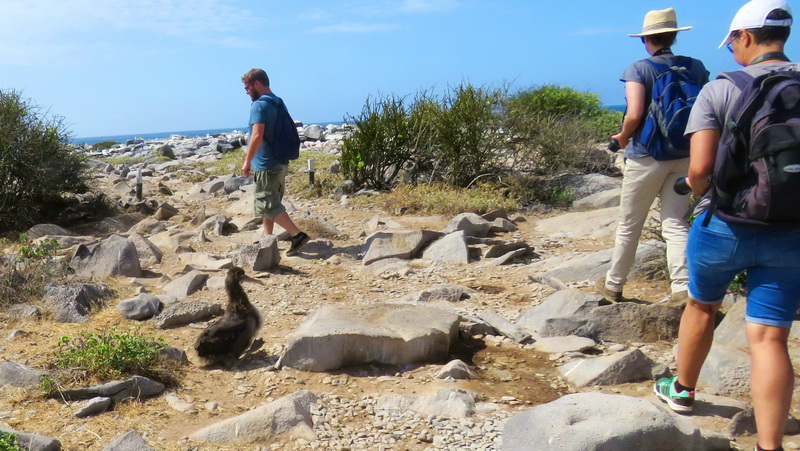 Trail ettiquete when visiting the Galapagos Islands.