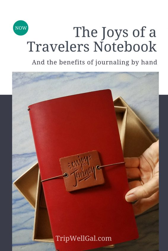 Travelers Notebook Pin