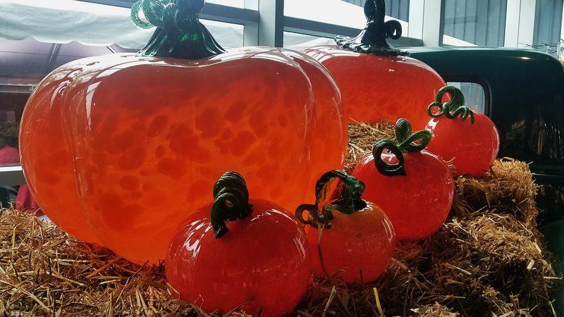 Pumpkin display inside Corning Museum of Glass