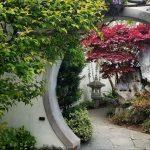 Love trees? Visit the hidden US Arboretum in Washington DC