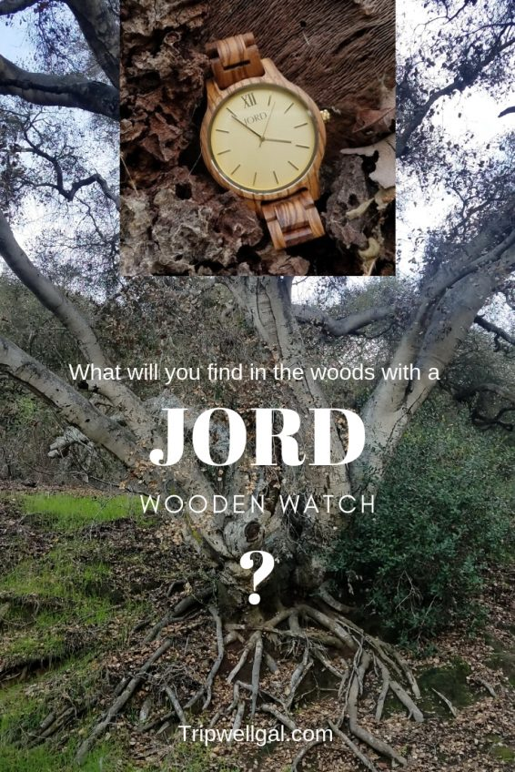 What will you find in the woods with a Jord wooden watch
