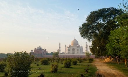 First time in India? Join a travel group to see the best of Rajasthan