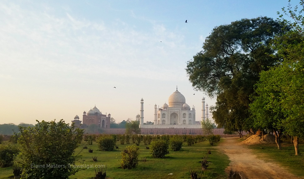Taj at dawn from the Moon Garden in India