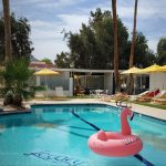 Dive into chic nostalgia at the Palm Springs Monkey Tree Hotel