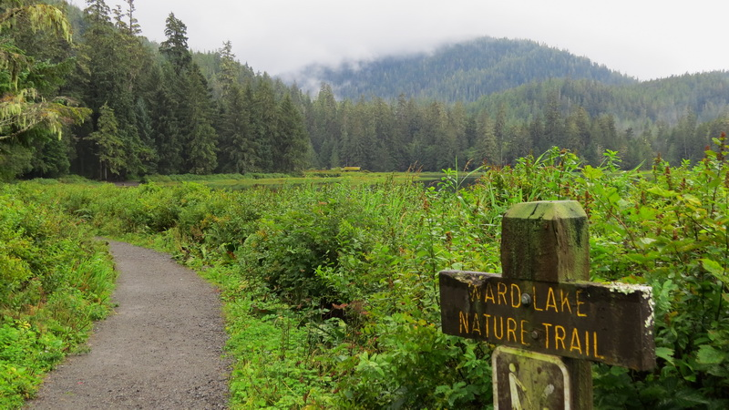 The Ward Lake Nature Trail will take you around the lake.