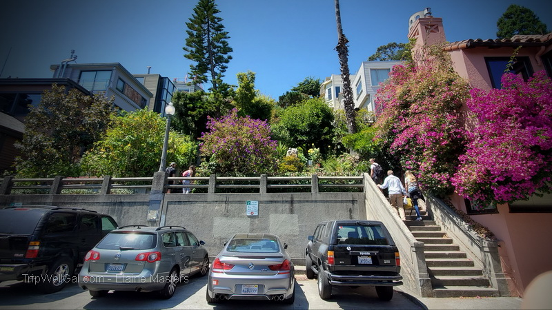 Filbert Street steps cross several Telegraph Hill streets